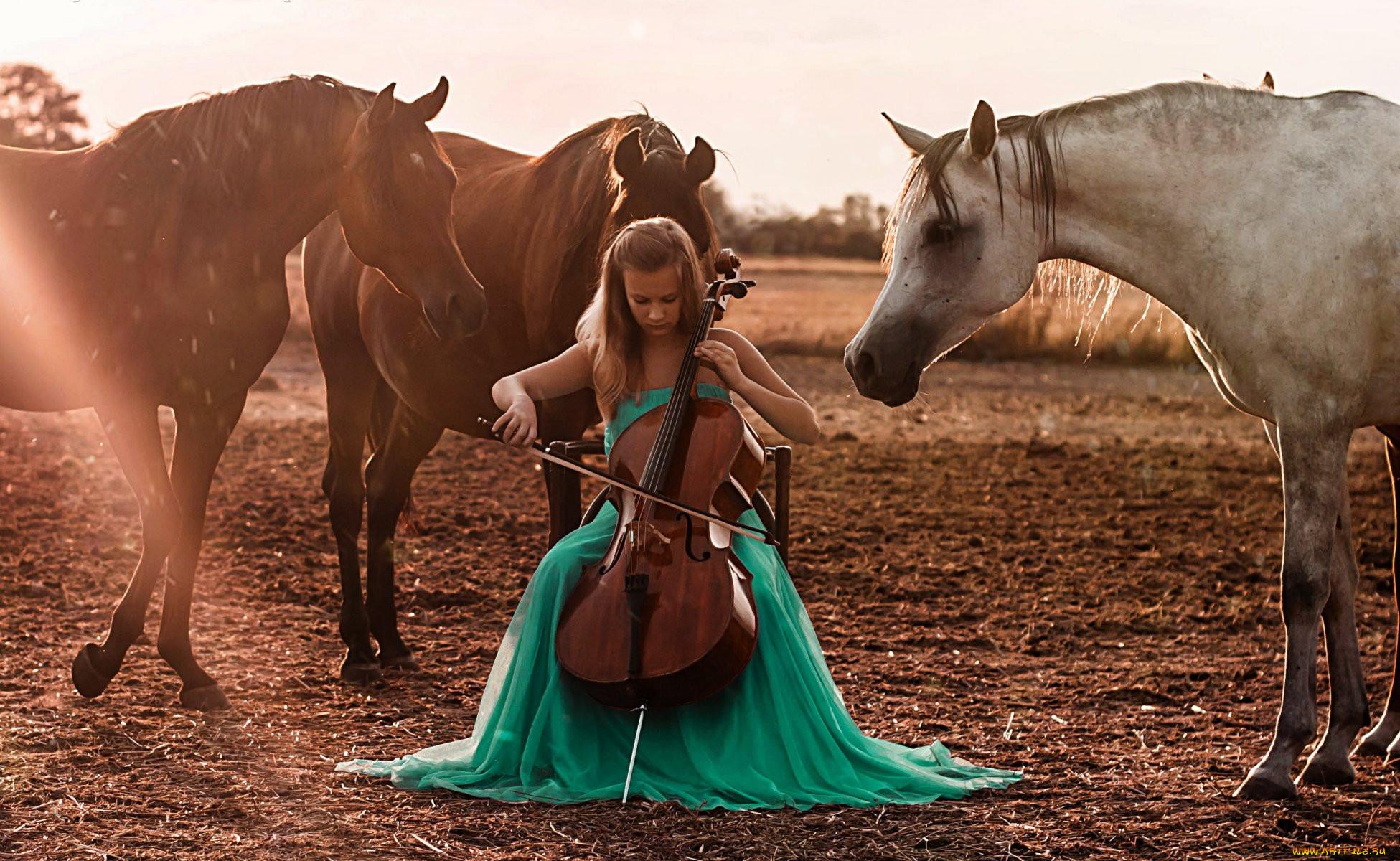 Картинки про лошадей с музыкой
